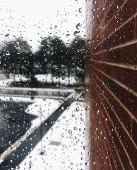 College rain 2018